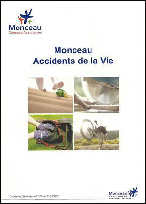 Monceau_Accidents_de_la_Vie